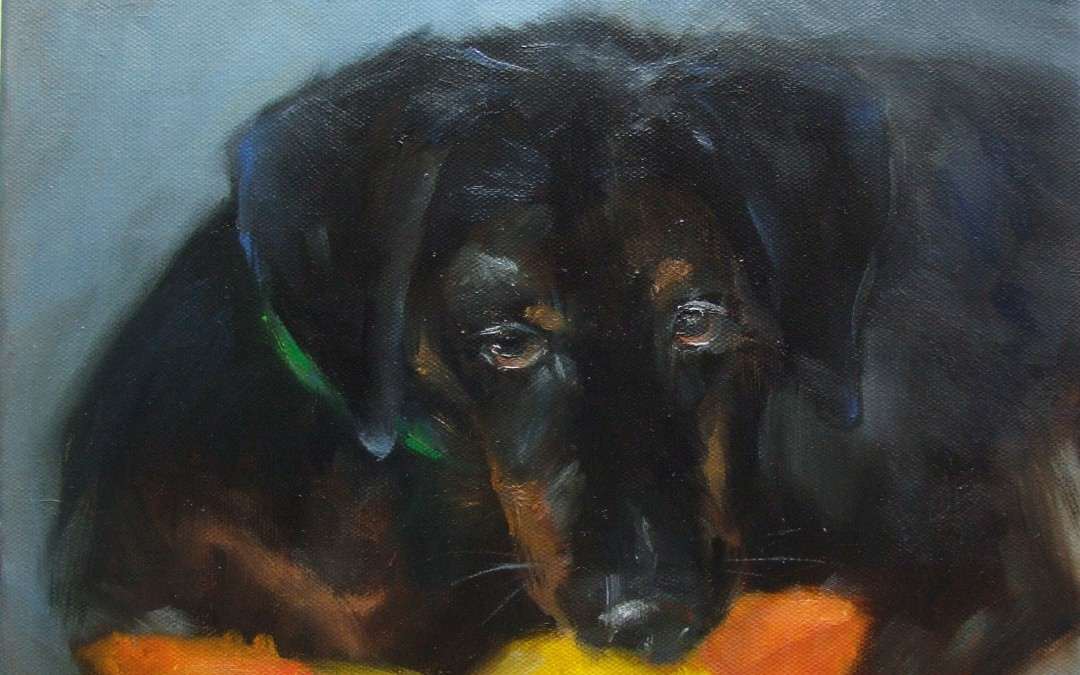 Tucker and His Duck   12 x 12