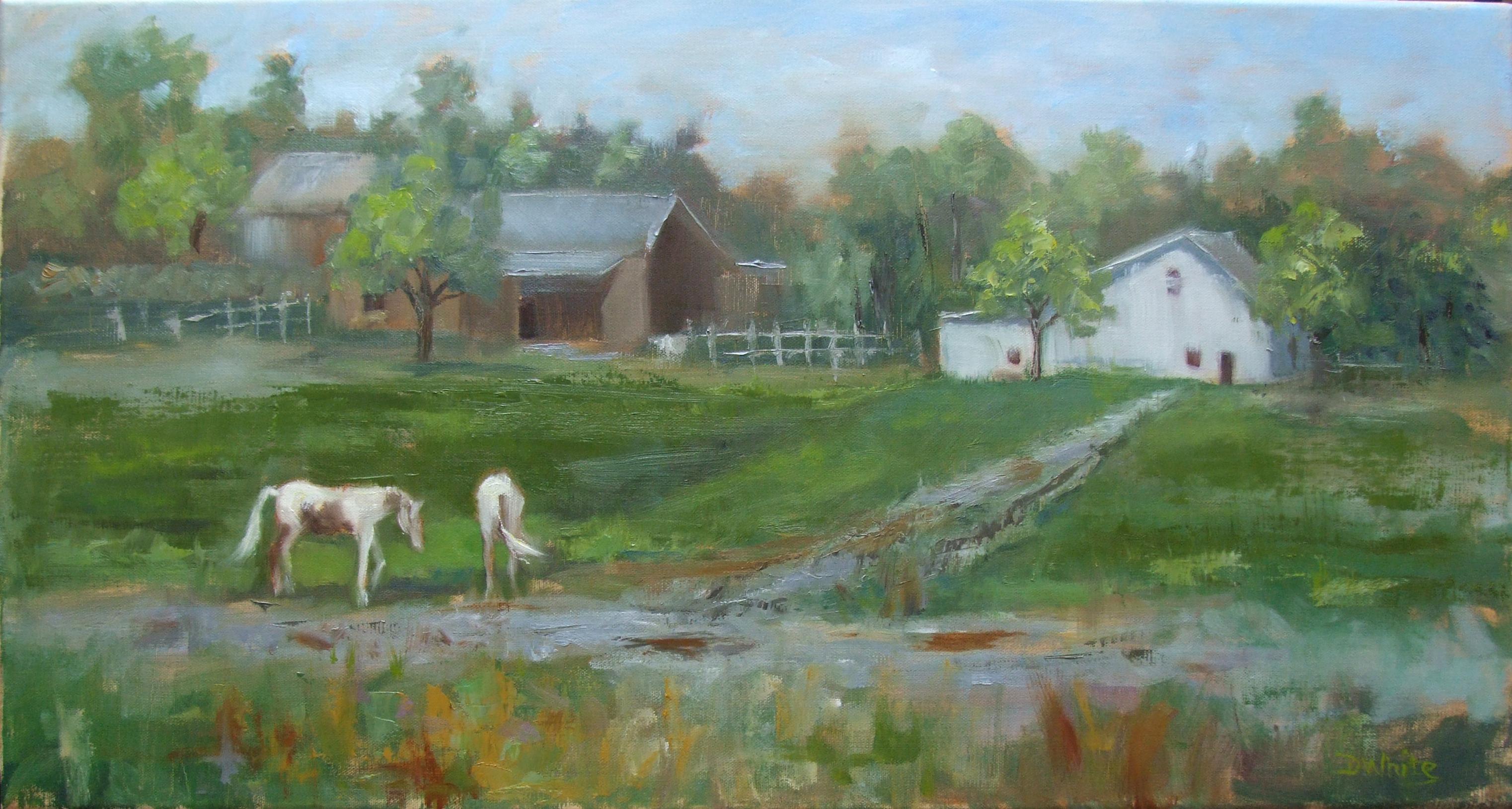 White Barn  12 x 24